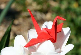 Cranes 1 070