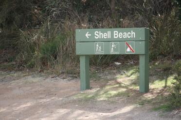 New_camera_shell_beach_082