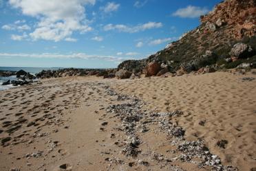 New_camera_shell_beach_179